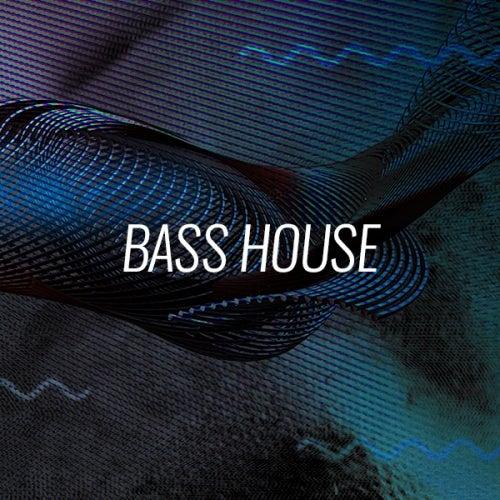 Fidget House, Bass House
