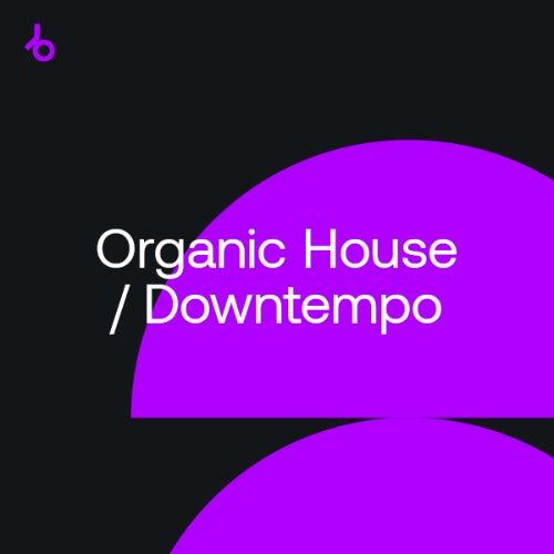 Organic House, Downtempo