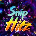 Snip Hitz Music